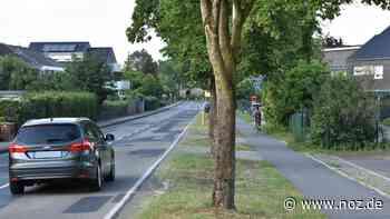 Bäume könnten gefällt werden: In Spelle sollen Schutzstreifen für Radler auf der Straße entstehen - noz.de - Neue Osnabrücker Zeitung