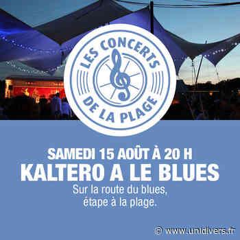 Kaltero a le blues en concert Nevers Plage samedi 15 août 2020 - Unidivers
