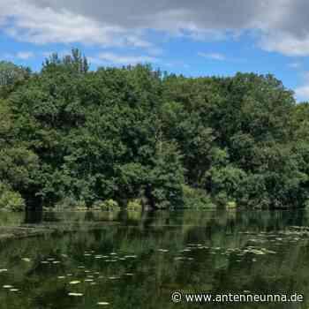 Ausflugstipp: Beversee in Bergkamen - Antenne Unna