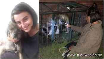 """Baasje Roxana herenigd met hond Scooby na dwaaltocht van meer dan vijftig kilometer: """"Het waren bange dagen"""""""