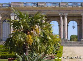 Un nouveau jardin africain au Grand Trianon de Versailles - Time Out Paris