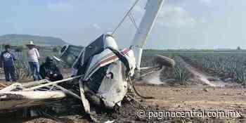 Se desploma avioneta en Romita - Página Central