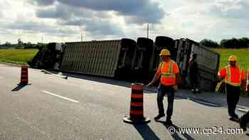 Dozens of pigs dead after rollover on Ontario highway west of Kitchener - CP24 Toronto's Breaking News