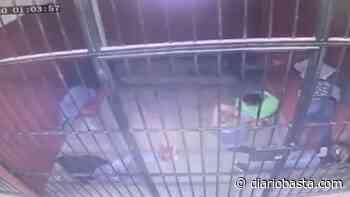 Se suicida detenido en galeras de juzgado cívico - Diario Basta!