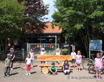 19 Kinder kommen in die Grundschule - GZ Live