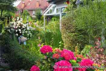 Was in Selm, Olfen, Nordkirchen wichtig ist: Klimaschutz und Blütenpracht - Ruhr Nachrichten