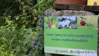 Unordnung im Garten tut gut - Süddeutsche Zeitung