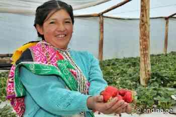 Midis fortalecerá capacidades productivas de 246,39 familias de la Sierra y Selva - Agencia Andina
