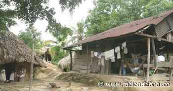 Investigan muerte de siete niños indígenas en la Sierra Nevada de Santa Marta - http://www.radionacional.co/
