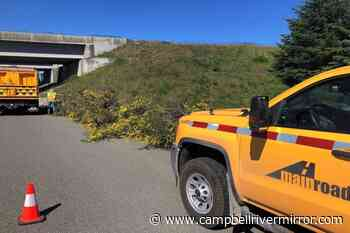 Site preparation for weather station installation on Highway 19 - Campbell River Mirror