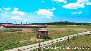 Bräunlingen: Bereicherung für Bruggen - Bräunlingen - Schwarzwälder Bote
