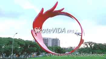 World View: SkateVIDA 5