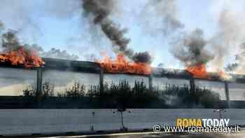 Incendio sul Raccordo: sterpaglie e barriera antirumore in fiamme