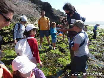 Exploration du littoral – plage du Chay plage du Chay samedi 26 septembre 2020 - Unidivers