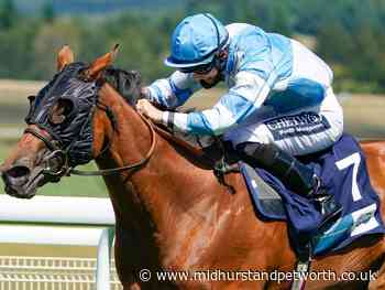 Glorious Goodwood - Sussex Stakes raceday LIVE - Midhurst and Petworth Observer