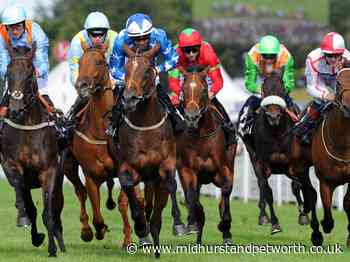 Glorious Goodwood 2020 - all the runners, riders and results - Midhurst and Petworth Observer