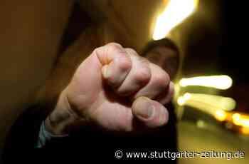 Besigheim im Kreis Ludwigsburg - Mann schlägt mit Tretroller auf 55-Jährigen ein - Stuttgarter Zeitung