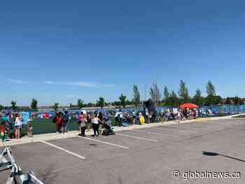Coronavirus: Non-resident fees in place for Chestermere beach until end of 2020 | Watch News Videos Online - Globalnews.ca