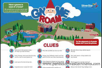 Gnomes smashed, stolen from SilverStar – Penticton Western News - Pentiction Western News