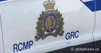 Alberta man facing charges after B.C. car stolen, dog dragged a block: police