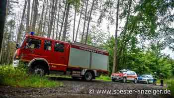 Warstein-Niederbergheim: Rauchsäule über dem Wald - Feuerwehr warnt vor Waldbrand-Gefahr - Polizei zeigt Ve... - Soester Anzeiger