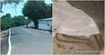 Hombre muere tras ser arrollado por 'carro fantasma' en Zona Bananera - Seguimiento.co