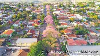 Cruzeiro do Oeste passa dos 60 casos confirmados do novo coronavírus - ® Portal da Cidade   Umuarama