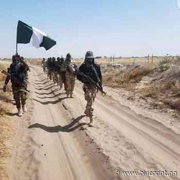 Troops kill 2 bandits, arrest 3 in Zamfara - Blueprint newspapers Limited