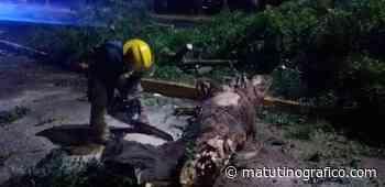 Protección Civil y Bomberos de Tepic atiende código tres de emergencia - Matutino Grafico