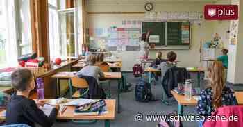 Entwicklung von pädagogischen Konzepten in Waldsee: Fachbüro kostet mehr Geld - Schwäbische