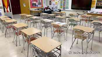 Cayuga County school leaders: Reopening plans will evolve - The Citizen