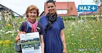 Ronnenberg: Stadt setzt auf Blühflächen mit Wildblumen - Hannoversche Allgemeine