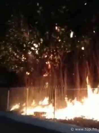 Novo incêndio atinge estação de trens de Japeri - Super Rádio Tupi