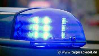 Nach Vergewaltigung in Kleinmachnow: Polizei veröffentlicht Phantombild von Täter - Berlin - Tagesspiegel