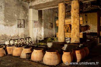 Visite libre d'une cave gallo-romaine reconstituée Mas des Tourelles samedi 19 septembre 2020 - Unidivers