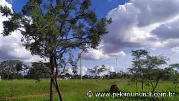 Decreto define poligonal do Parque Ecológico do Areal - Pelo Mundo DF