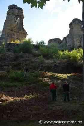 Klusberge: Freie Sicht auf die Felsenfinger - Volksstimme