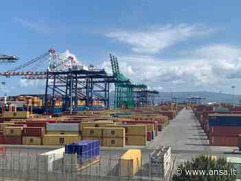 Autorità Gioia Tauro,dal Mit apertura sul futuro degli ex portuali - Porti e Logistica - Mare - Agenzia ANSA