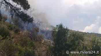 Fiamme e fumo a Bordighera, a fuoco la collina di Montenero - Riviera24