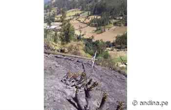 Alerta en Áncash: incendio forestal afecta instalaciones eléctricas y pastos en Carhuaz - Agencia Andina