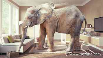Covid-19 is the Elephant in the Room