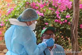 En la planta de sacrificio de Maicao se tomaron muestras masivas de COVID-19 - EL HERALDO
