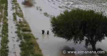 Niegan inundación de Santo Domingo - El Mañana de Reynosa