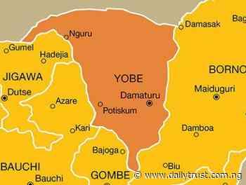 NGO donates automated sewage truck to Yobe hospital - Daily Trust