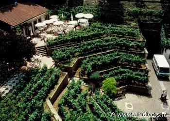 Visite guidée du Chemin des vignes Chemin des Vignes samedi 19 septembre 2020 - Unidivers