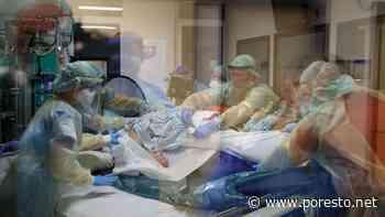 Campeche registra un 10.3% de muertes en casos de COVID-19 - PorEsto
