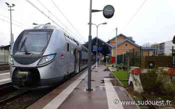 Bassin d'Arcachon : un piéton meurt percuté par un train. Perturbations en gare de Bordeaux - Sud Ouest
