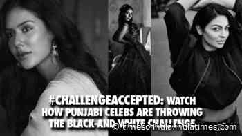 #Challengeaccepted has caught Punjabi actresses in droves!