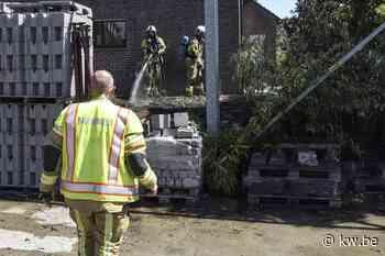Haag in lichterlaaie wordt snel gedoofd door brandweer