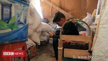 Yazidi children still haunted by Islamic State, Amnesty International says